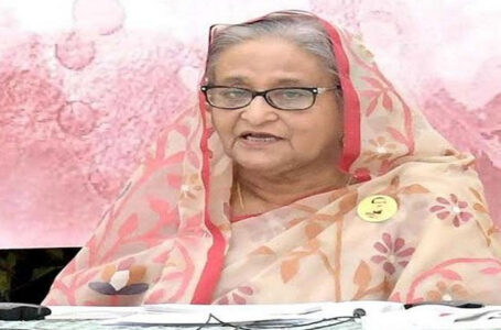 Vested quarters out there to tarnish Bangladesh image says Hasina